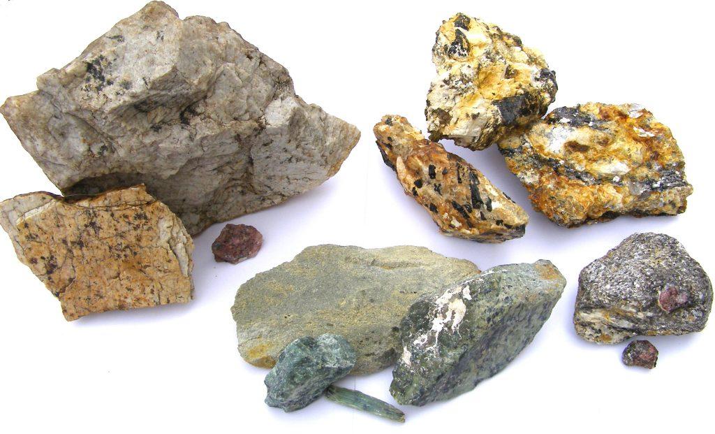 Black Gold Natural Resources