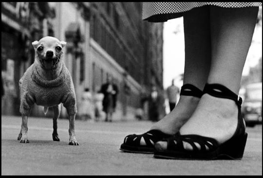New York City 1946