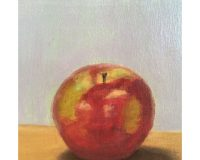 Portrait of an apple from Willowdale Academy