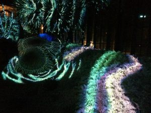 Nightscape will return to dazzle nocturnal visitors on Aug. 3.