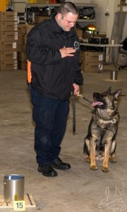 Chester County Deputy Sheriff Ryan Barr trains with Murphy, his K-9 partner. Photo courtesy of JD Photography