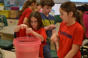 Students in Swisher's fifth-grade class prepare water samples from the Pocopson Creek for testing.