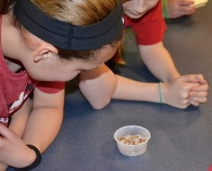Students in Linda Bowman's class enjoy watching some wriggling mealworms supplied by Dave Dickens, a former principal at Unionville High who now works a the Stroud Water Research Center.