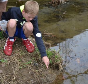 A student in Dave Lichter's class points to a water spider darting along the creek.