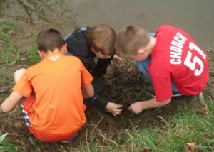 After releasing their young trout, a group of fifth-graders dig up some worms to feed the bigger fish in Pocopson Creek.