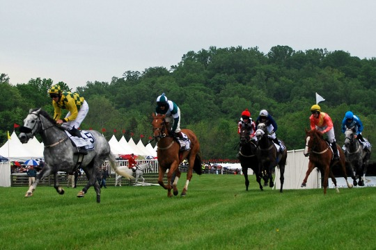 The steeplechase action begins at the 86th Radnor Hunt Races, a fundraiser for the Brandywine Conservancy.