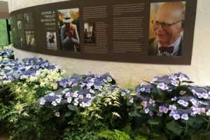 Flowers donated by Longwood Gardens greet guests at the celebration of Frolic Weymouth's life on Friday, April 30, at the Brandywine River Museum of Art.