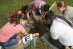 Students dig in the center of the UAME Church, part of a partnership between the Chester County Intermediate Unit and The Land Conservancy for Southern Chester County.