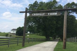 A 300-unit subdivision plan for Crebilly Farm in Westtown Township is generating public protest.