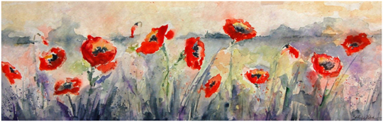 Poppies by Sally Wilson