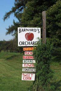 Barnard's Orchard, a beloved Newlin Township destination, has been saved from development.