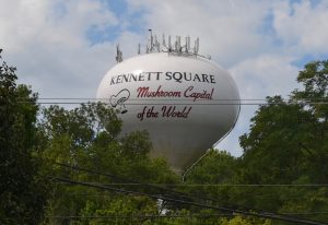 Kennett Square's Borough Council votes to support an attempt to repeal the Sterling Act, but not at the City of Philadelphia's expense.