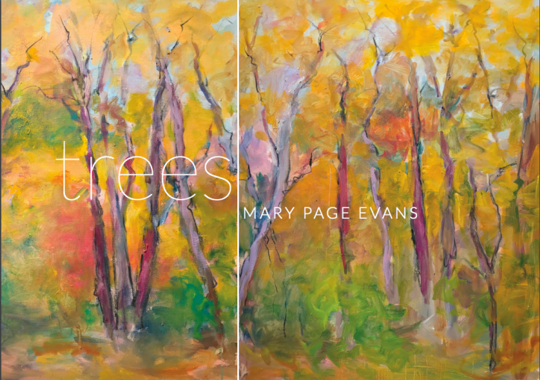 Trees exhibity by Mary Page Evans at the Somerville Manning Gallery