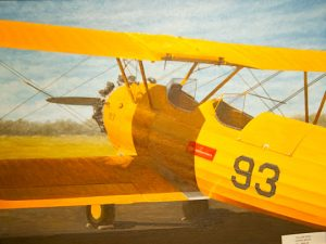 """Yellow Peril,"" by Steven White"