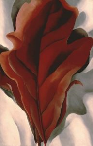 """""""Large Dark Red Leave on White,"""" by Georgia O'Keeffe"""